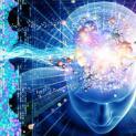 शाकाहारी लोगों का मस्तिष्क रहता है ज्यादा सक्रिय